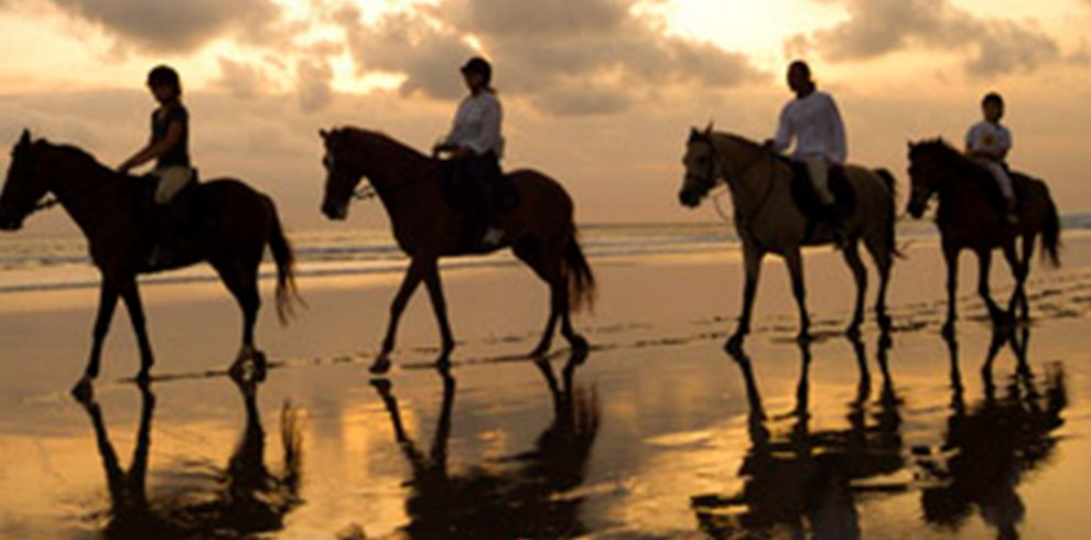 1385954654_horse_riding